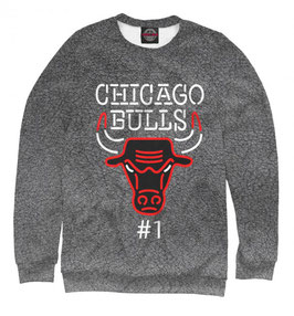 кофта NBA темно-серая Чикаго Булс