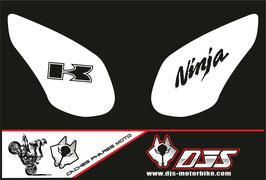 1 jeu de caches phares DJS pour kawazaki ZX10R 2008-2010 microperforés qui laissent passer la lumière - référence : ZX10R-2008-2010-001-