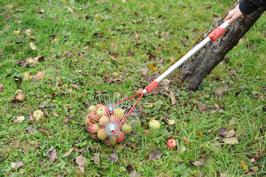 Äpfel-Rollblitz
