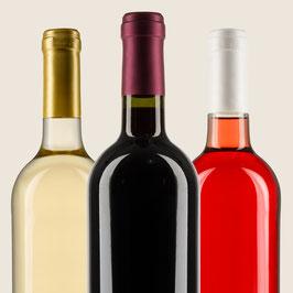 Weinpaket Bunt