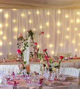 Rideau lumineux blanc  - Réf : DE023