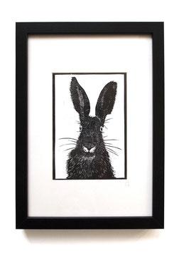 Tiere mit Fell – Originaldrucke