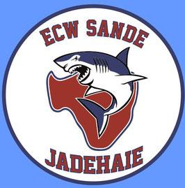 ECW SANDE AUFNÄHER