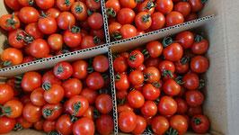 キャロルスターミニトマト 3㎏入り ミディアムサイズ