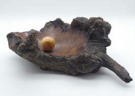 Holzschalen-Objekt aus Eukalyptusholz
