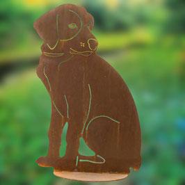 cucciolo di Labrador seduto