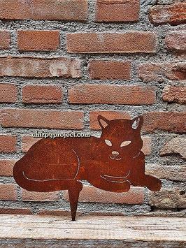 Gattino sdraiato