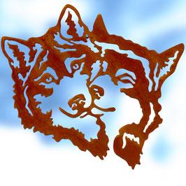 Husky Amiconi Cod. Z16