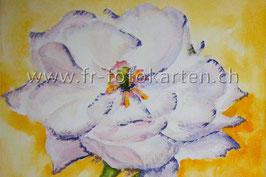 Blume weiss / Karten Nr.1109AC