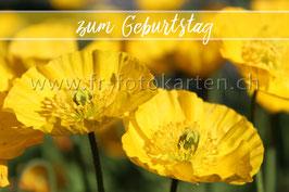 Geburtstagswünsche / Karten Nr.1045FR