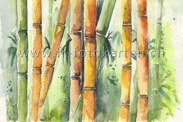 Bambus / Karten Nr.1102AC
