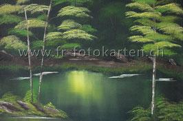Landschaft Wald / Karten Nr.1114BR