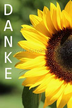 Danke Sonnenblume / Karten Nr.1080FR