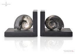 FOSSILINE SET OF BOOKENDS