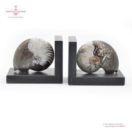 FOSSILINE BOOKENDS SET