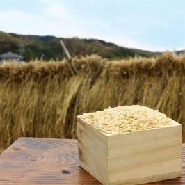 【野菜と同梱】天日干し玄米 1kg