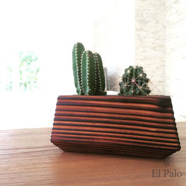2 Kakteen + Topf aus Holz - El Cactus 5.0 - El Palo Germany