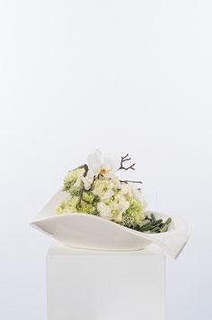 Tiziano Schale Jesolo 21 cm breit creme