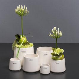 Kübel Amalfi cm creme Orchideentopf