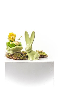 Tiziano Hase Felipe verde 12 cm