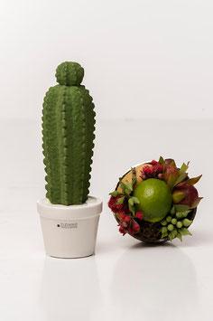 Tiziano Kaktus Carpusschmal 24cm dunkelgrün