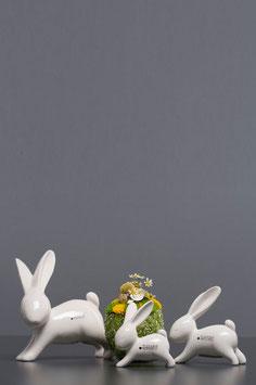 Tiziano Hase Fabrio springend 10 /13/ 19 cm creme