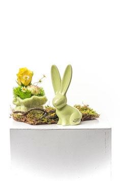 Tiziano Hase Felipe verde 15,5 cm