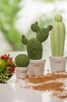 Tiziano Kaktus Carpus schmal 22cm mehrarmig