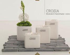 TIZIANO Teelicht Crosia 6 cm creme