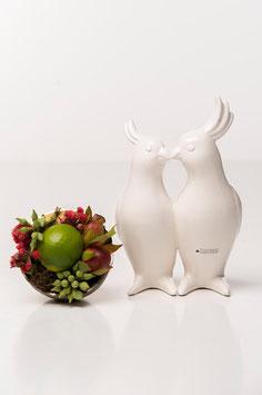 Tiziano  Paar Papagei Eraldo Kopf weiß-creme