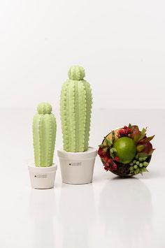 Tiziano Kaktus Carpus schmal 24cm verde hellgrün