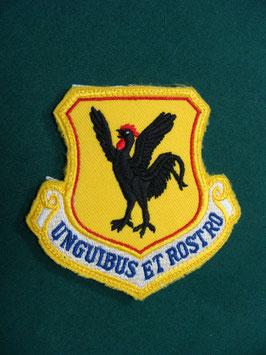 沖縄米軍 第18航空団 記章