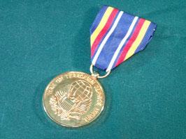 対テロ戦争従軍記章メダル 中古良品