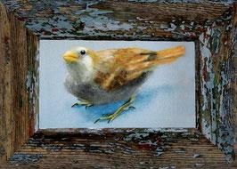 006 Postkarte