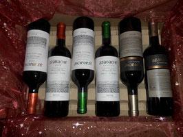 6er-Genuss-Paket Rioja Rot