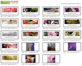 """Fotoklappkarte """"Faszination Natur"""""""