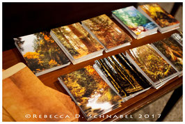Postcards (Set of 10)
