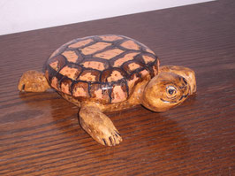 schildpad 3