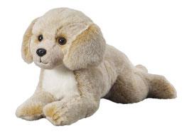 Labrador liegend 36cm