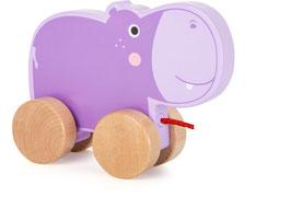 Zieh-Hippo