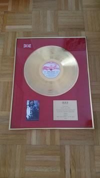 Lenny Kravitz Award