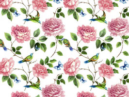 EXOTIC BIRD CHINTZ
