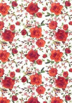 Roses Orange Small