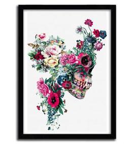 """"""" Skull VII """" By Riza Peker"""