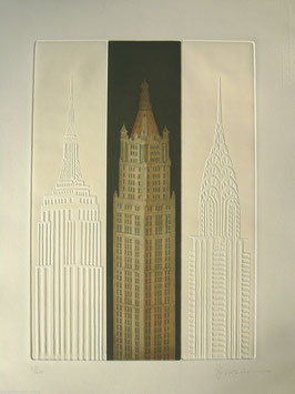 Joseph Robers New York Woolworth Building