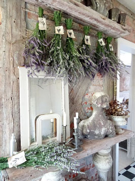 1 Bund Lavendel