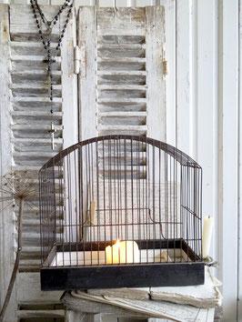 alter Vogelkäfig aus Belgien