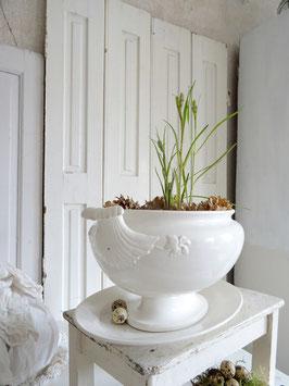 VERKAUFT Dan 05.04.   oval antike Terrine weiße Keramik CREIL