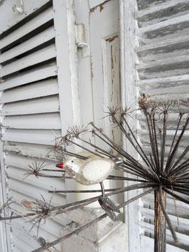 uralter Glasvogel silber-weiß