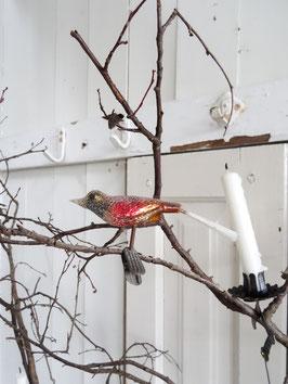 VERKAUFT Prü 18,08, Glasvogel antik mehrfarbig bezuckert